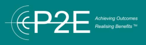 p2e Consulting